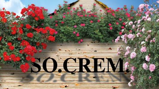 So.crem. Trento - Società Tridentina per la Cremazione - Roseto
